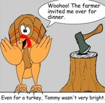 Turkey Funnies