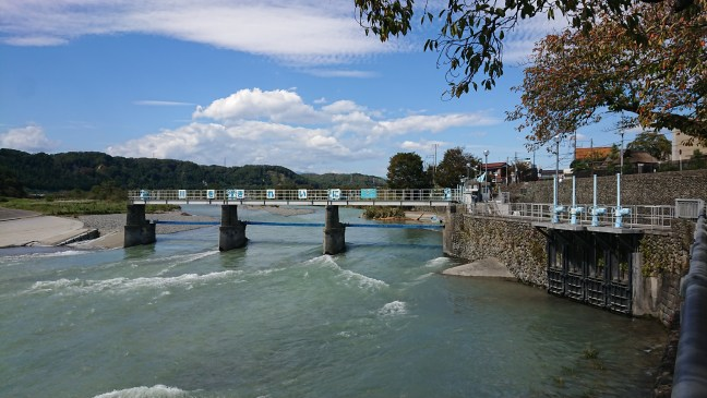 River is high at Hamura Intake Weir