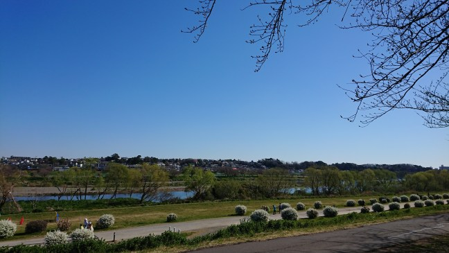 Blue skies over the Tama river
