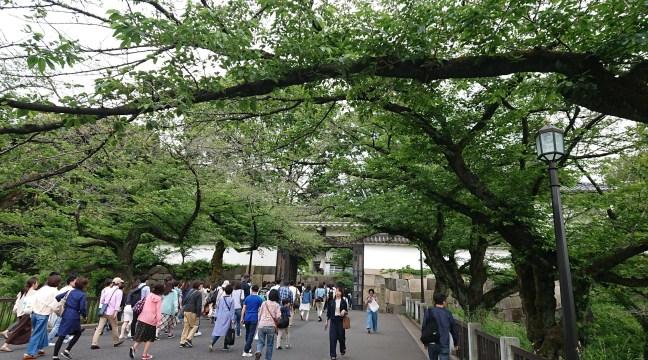 Gate to Budokan