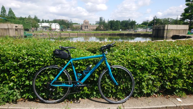 Bicycle leaning against bushes with pond and buildings in background