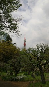 Tokyo Tower looming over trees and flowers in foreground