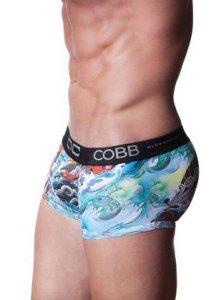 Alexander COBB Trunk Tattoo Dragon
