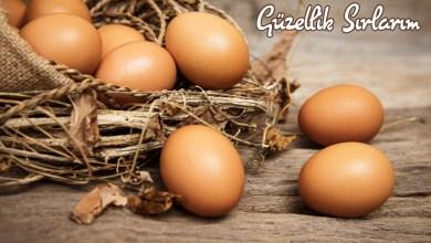 Photo of Kahverengi ve Beyaz Yumurta Farkı Nedir?