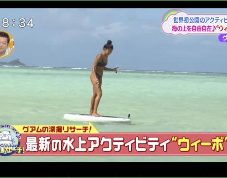 最新のマリンアクティビティ グアムの水上アクティビティ ウィーボ(Wheeebo)