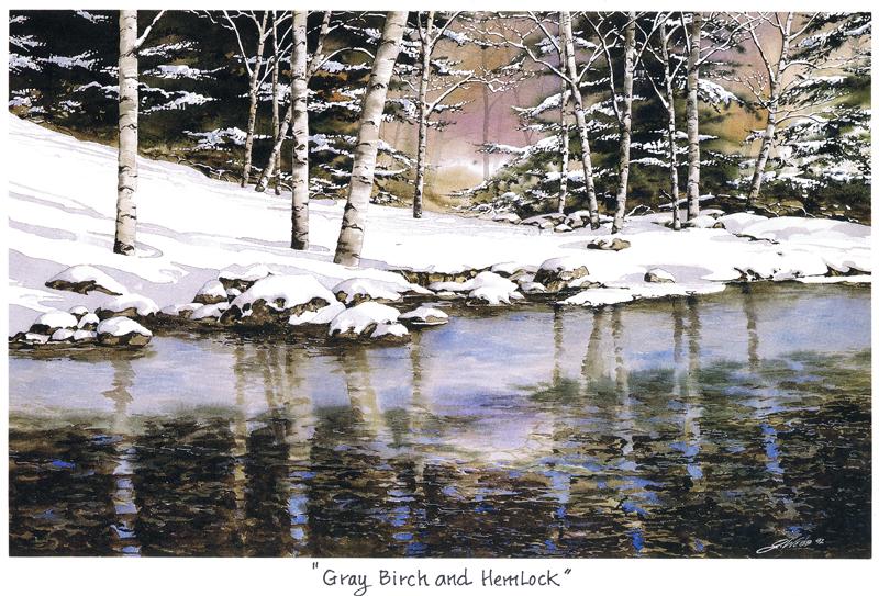 Gray Birch and Hemlock
