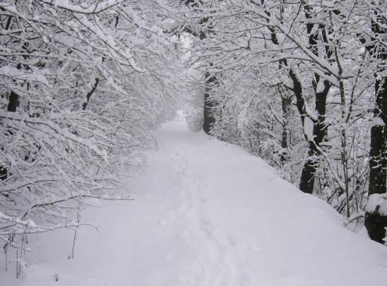 RAVELLO - Emergenza neve, Comune e Protezione Civile in campo - Gwendalina.tv