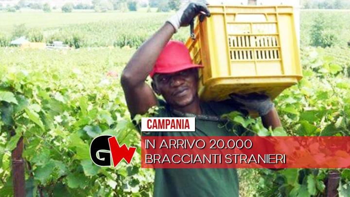 In arrivo 20.000 braccianti stranieri in provincia di Salerno - Gwendalina.tv