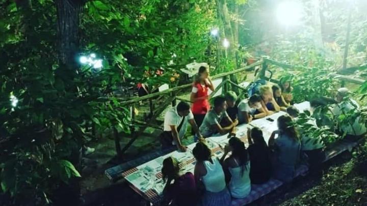 """Perito, annullata la """"Festa del Bosco 2020"""" - Gwendalina.tv"""