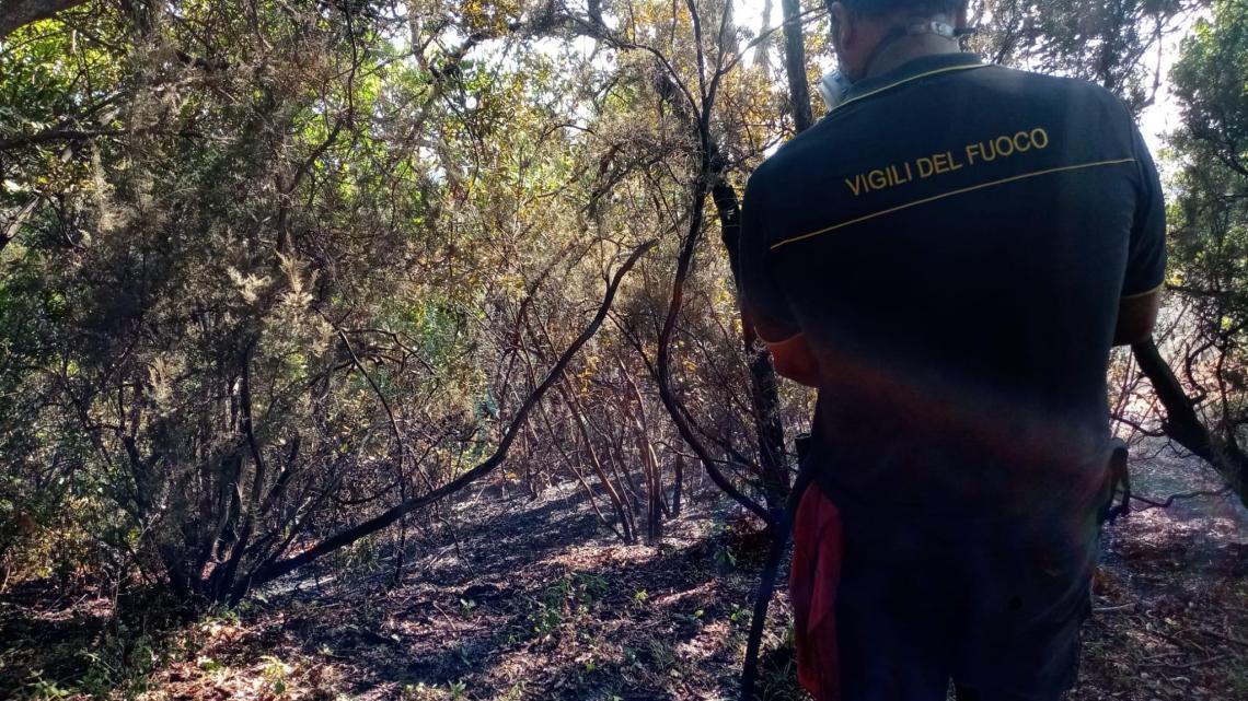 Torraca, a fuoco tre ettari di terreno - Gwendalina.tv