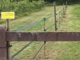 Parco, in arrivo il bando per l'acquisto di recinzioni elettriche - Gwendalina.tv