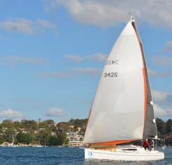 Asymmetric. spinnaker - G-whizz Elan 340
