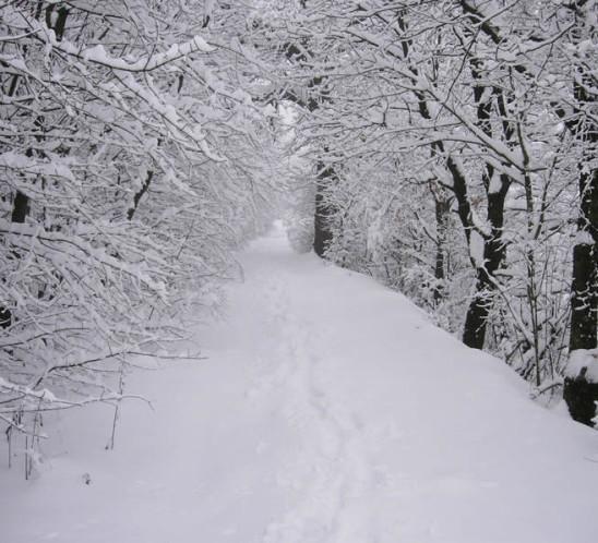 RAVELLO – Emergenza neve, Comune e Protezione Civile in campo