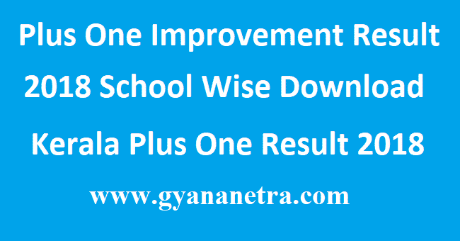 Plus One Improvement Result