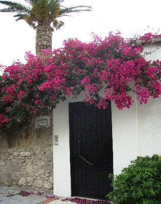 Photo: Entrance to home in Gaeta, Italy. Credit: Lisa Borre.