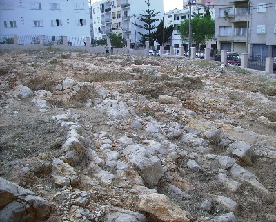 Photo: A portion of the large necropolis found in Ibiza. Credit: Lisa Borre.