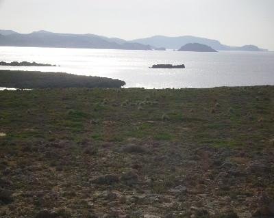 Photo: View of the north coast of Menorca. Credit: Lisa Borre.