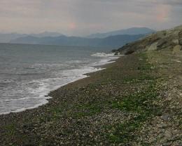 Photo: Beach in Pazar, Turkey. Credit: Lisa Borre.