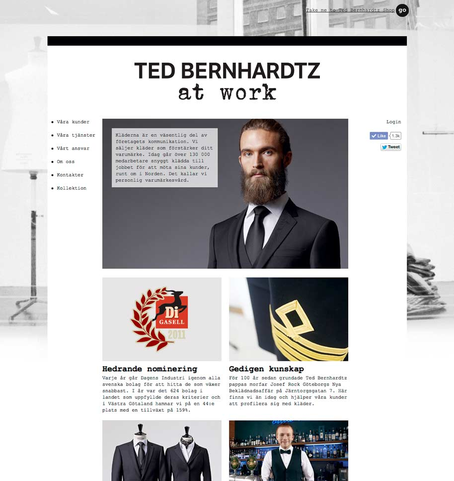 Ted_b_at_work_website_01