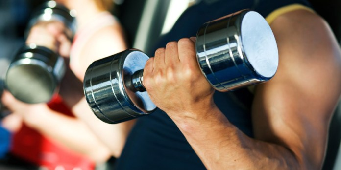 basic_free_weights_workout_beginners