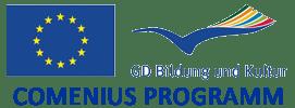 Programme und Partner