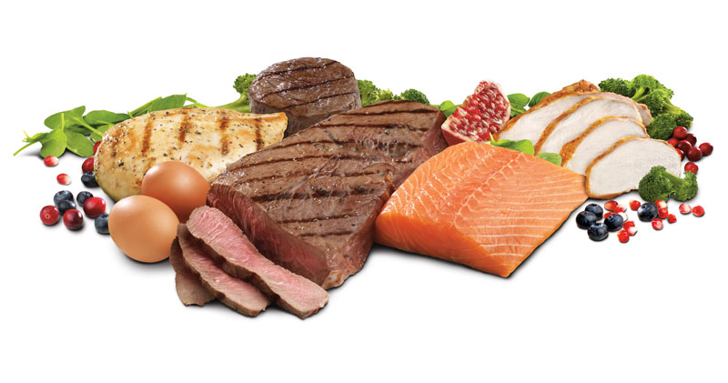 hög protein mat