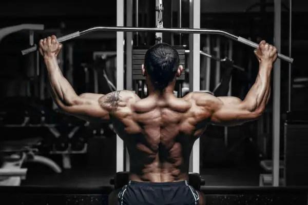 push pull legs träningsprogram