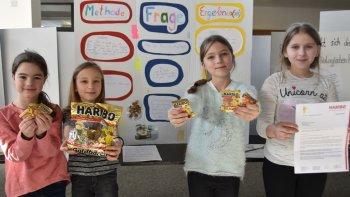 Permalink zu:Ganderkeseer Schüler forschen an eigenen Ideen