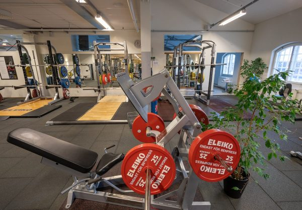 45 grader Eleiko Leg press-Benpress