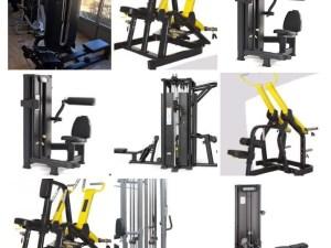Nya Ryggmaskiner Världsklass GymPartner s