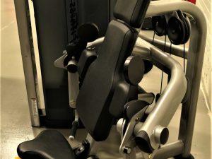 LifeFitness Armcurl-Bicepsmaskin Insignia