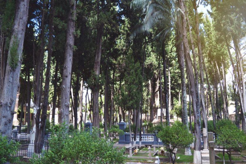 5 Cemeterio General