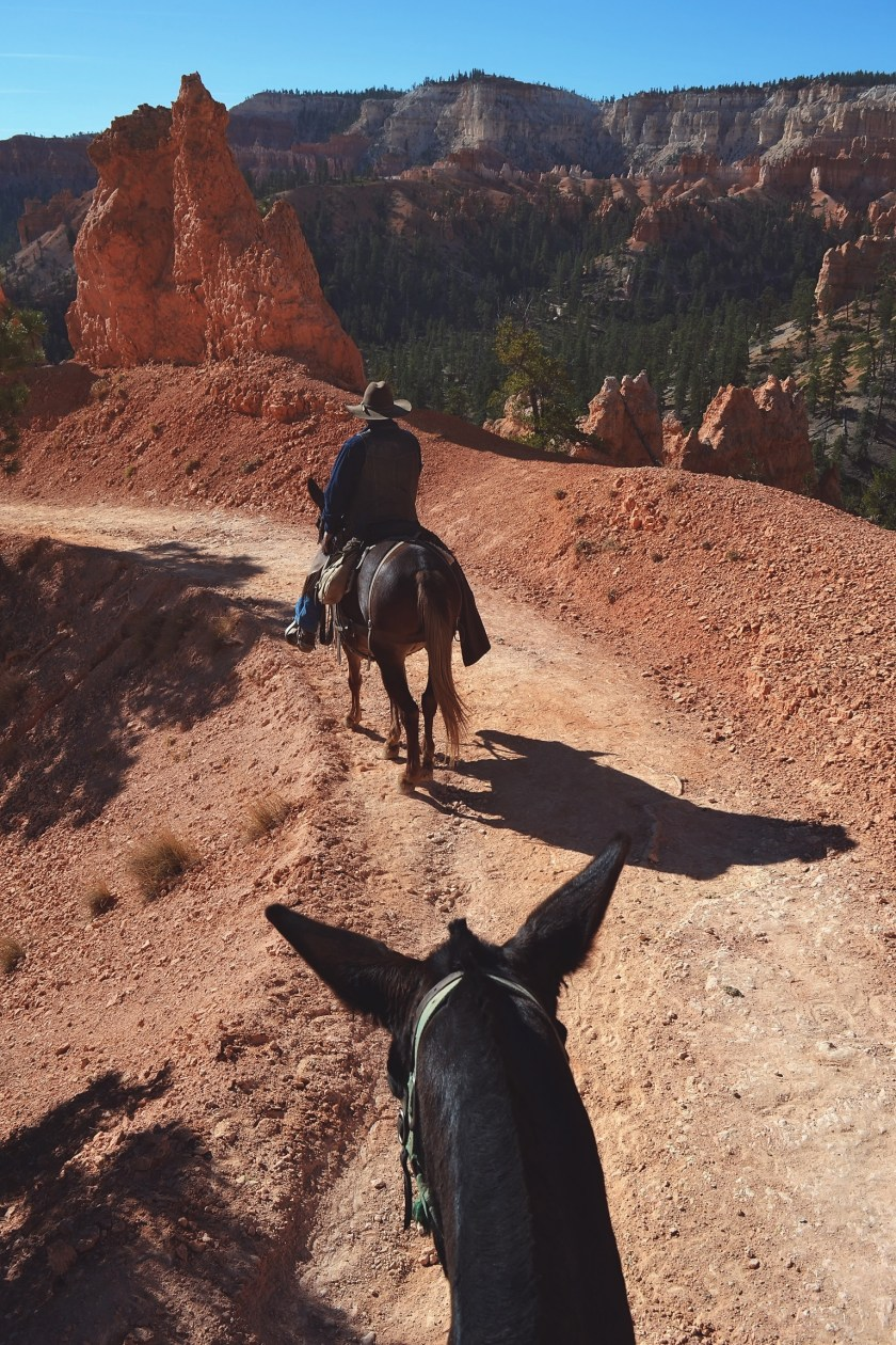 bryce-canyon-trail-riding-3