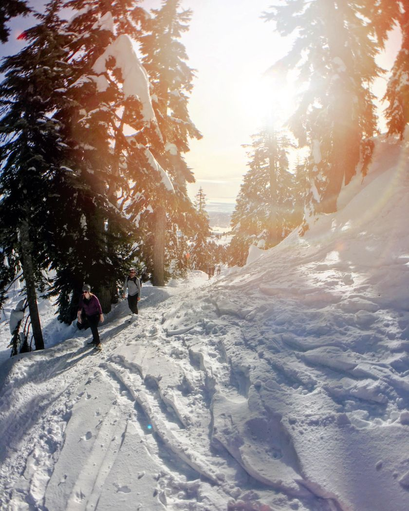 grouse-grind-snowshoe-grind-vancouver-british-columbia-trail-hike-2