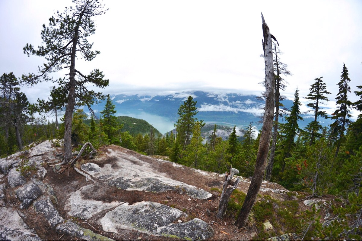 Hiking Al's Habrich Trail in Squamish, British Columbia (PHOTOS)