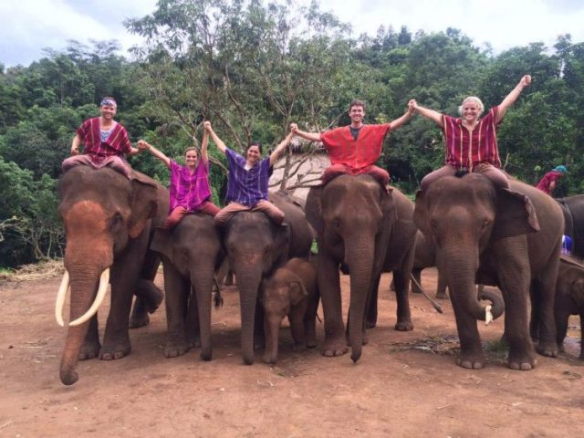 Grant Rachel and friends on elephants at Patara elephant farm