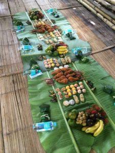 Lunch at Patara elephant farm