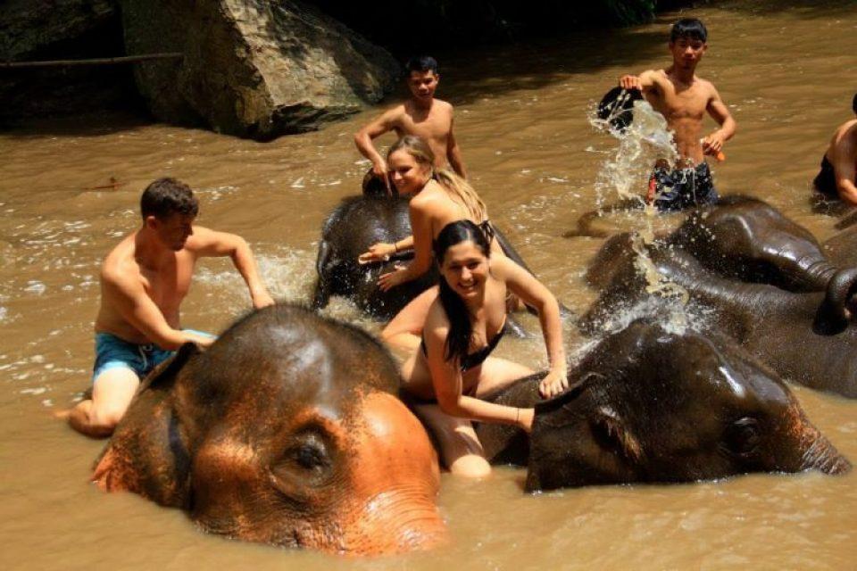 Bathing elephants at Patara elephant farm