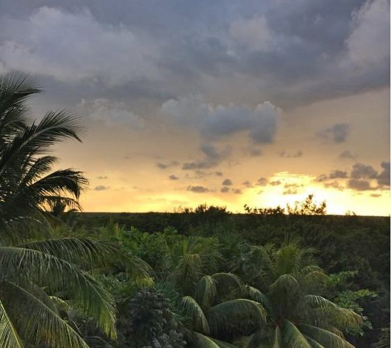 Sunset from Mateos in Tulum