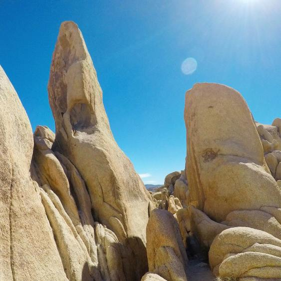 joshua tree california rocks