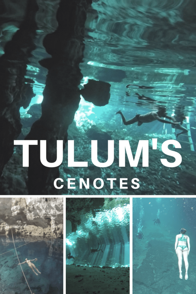 Check out our guide on the best cenotes for snorkeling and diving in Tulum, Mexico. Explore the best cenotes in Tulum. #Tulum #Mexico #TulumScuba #TulumSnorkel #Tulumcenote #cenote #cavedive #cenotesnorkel