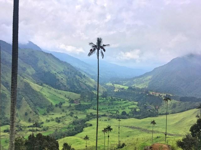 valle cocora