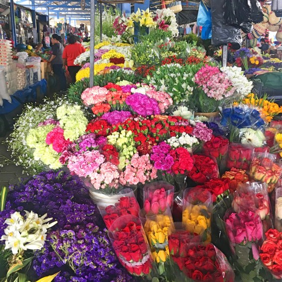 flowers in antigua market
