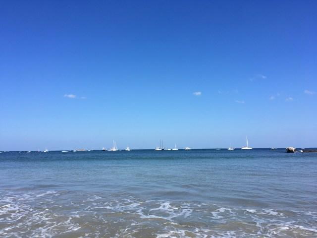 sailboats tamarindo