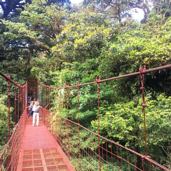 swinging bridge costa rica