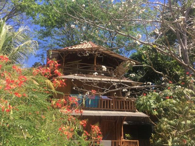 treehouse costa rica