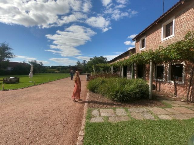 winery montevi