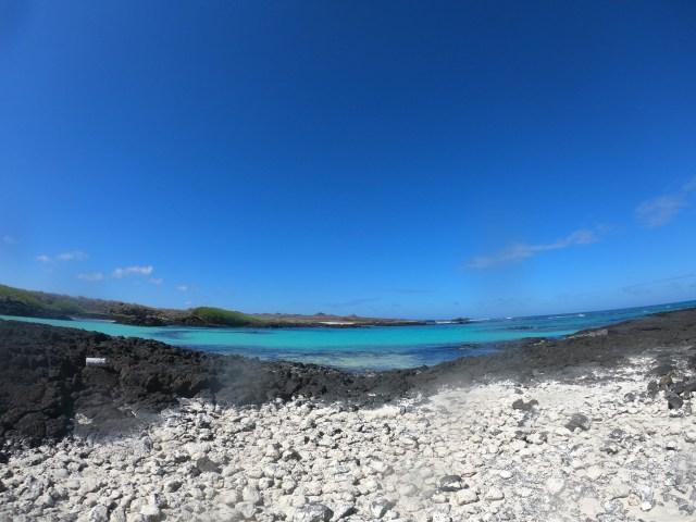 blue ocean galapagos