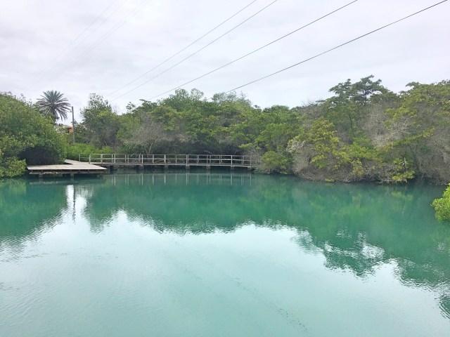 nymph lagoon santa cruz