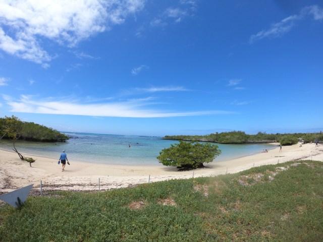 playa alemania galapagos